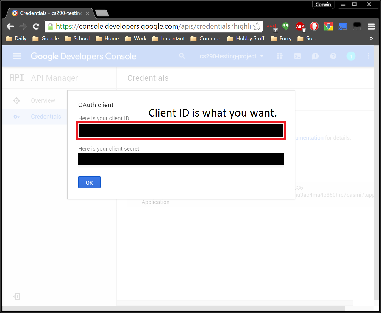 10 - OAuth Client Information